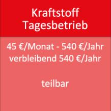 Kraftstoff Tagesbetrieb 45 €/Monat - 540 €/Jahr verbleibend 540 €/Jahr teilbar