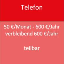 Telefon 50 €/Monat - 600 €/Jahr verbleibend 600 €/Jahr teilbar