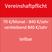 Vereinshaftpflicht 70 €/Monat - 840 €/Jahr verbleibend 840 €/Jahr teilbar